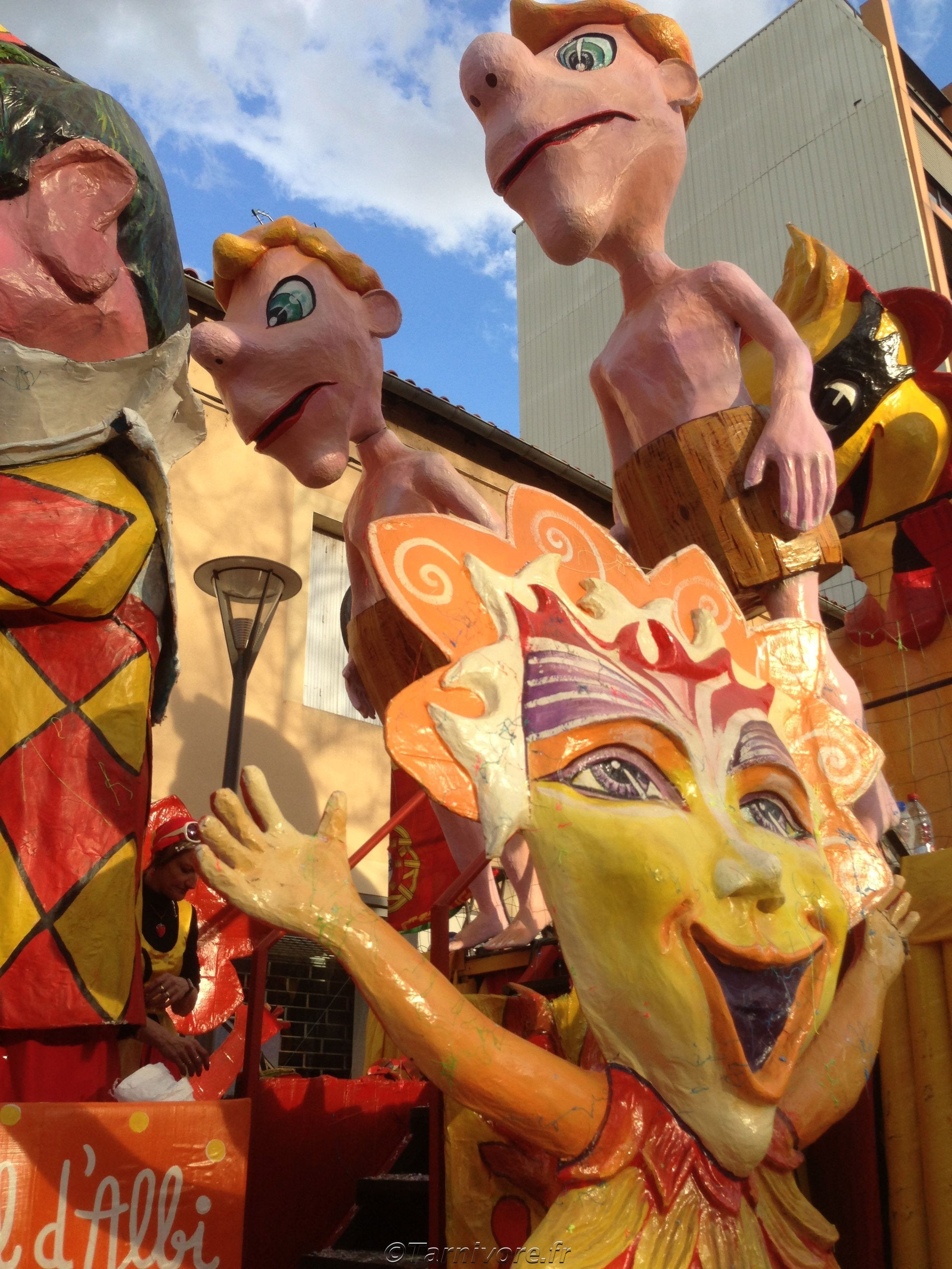 Char du carnaval 2013